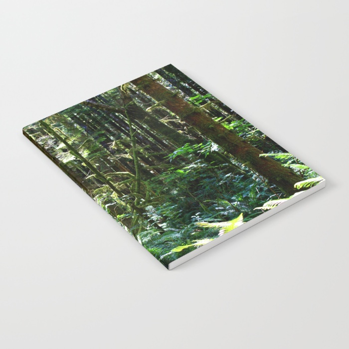 fresh-air-qpl-notebooks