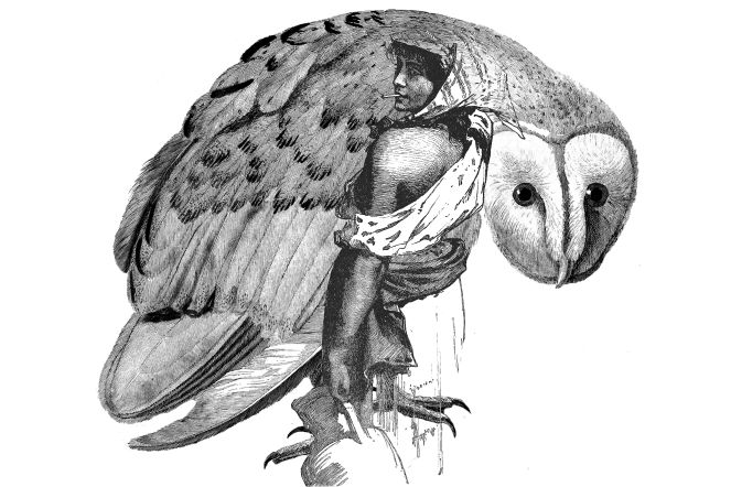owl woman small jpg