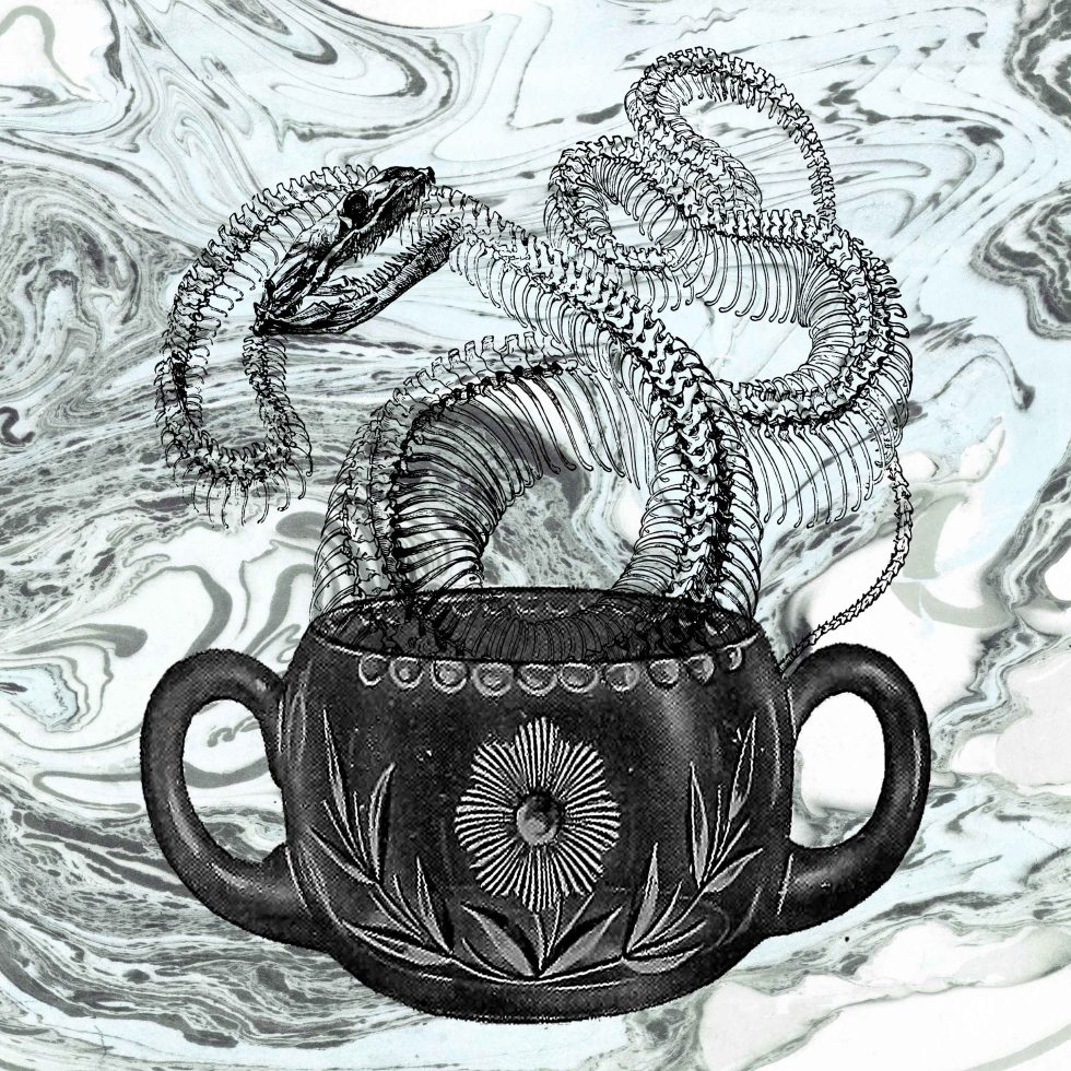 snake 3 small